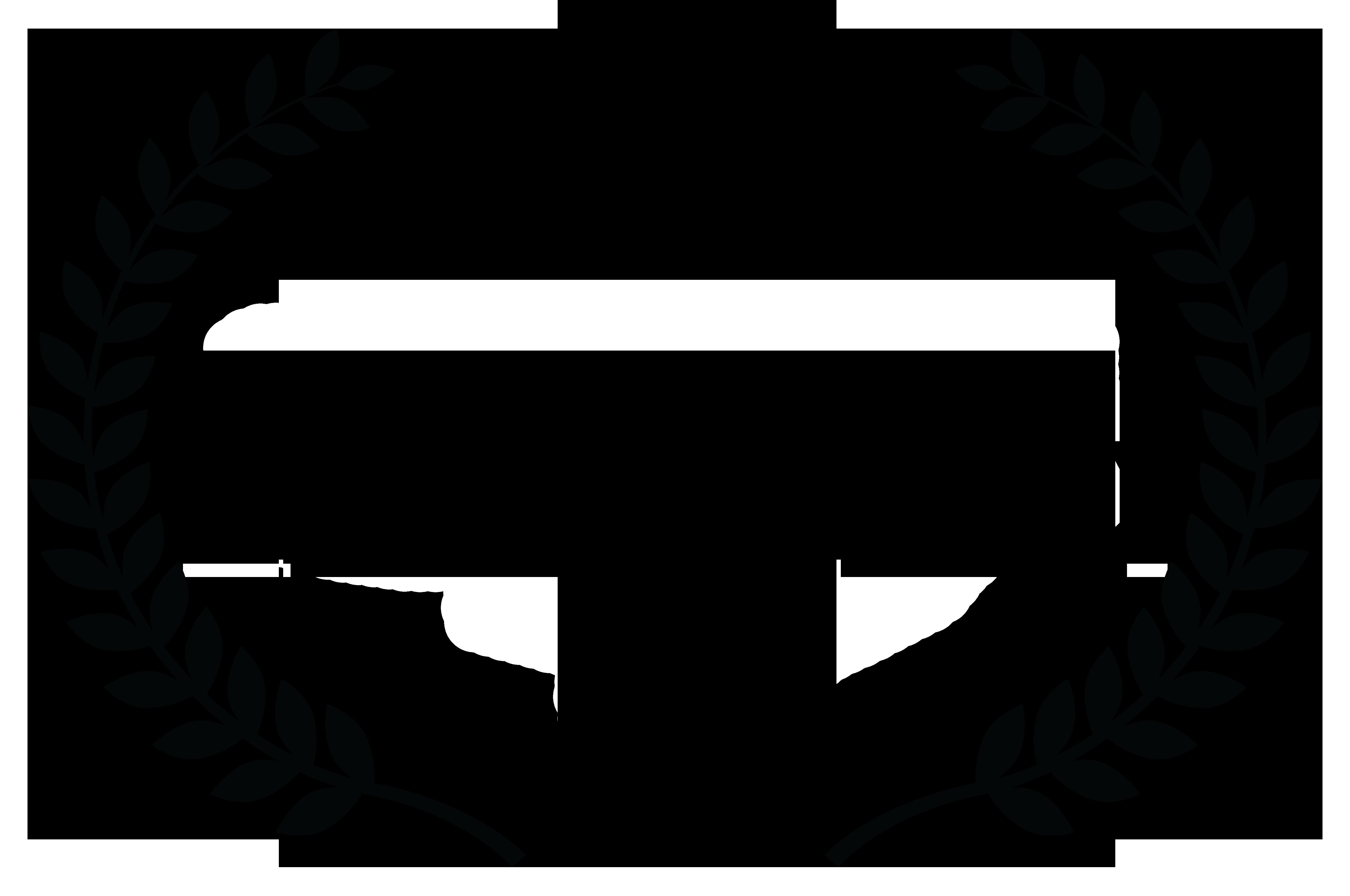 Ankara International Film Festival Best Screenplay Award, Best Actress Award (Ece Dizdar, Selen U�er)